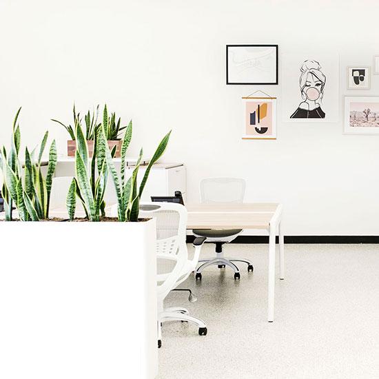 White Contemporary and Modern Narrow Rectangular Planters